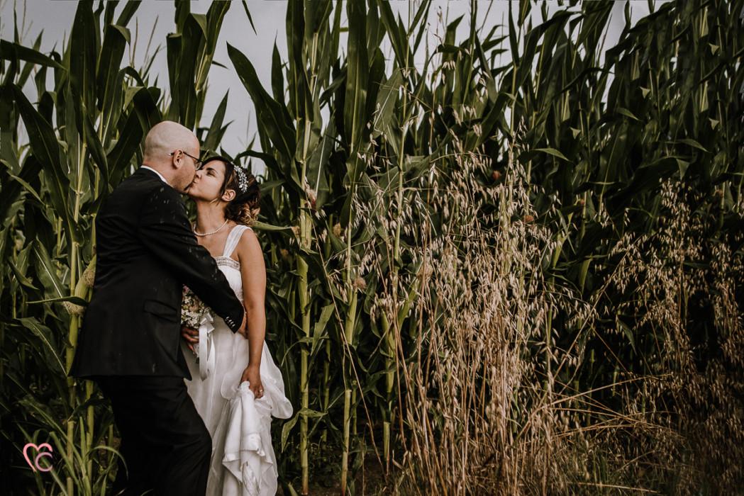 Ricevimento nuziale al Mulino della torre di Riva presso Chieri, sposi in un campo di mais, sessione di coppia